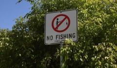 钓鱼不能任性!禁用渔具11类重磅出台!含钓具!