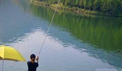 钓鱼新手在下雨天用碳素鱼竿钓鱼必须要防雷电!