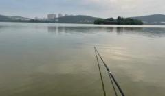 鱼竿越长钓获越多?10米长竿用一次就要扔,钓友:这根本不是钓鱼